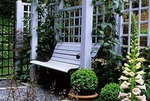 landscaping tips and ideas / by Linda Baird