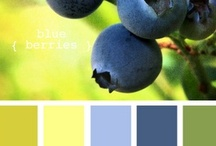 color inspiration / by Linda Baird