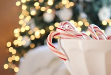 Christmas / by Karen Erickson