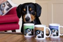 Alfie's Shop for Dog Lovers and Their Pooches / Browse my range of pawsome t-shirts, hoodies, mugs and find the perfect gift for your pooch or dog loving friend!   We deliver worldwide, just like Santa Paws. / by Alfie Entlebucher