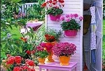 Garden Projects / by Susan Gardner