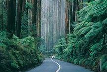 Places I'd Like to Go / by Sandra Fogle