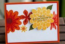 Miscellaneous Paper Crafts / by Lisa Mills Eifert