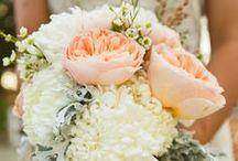 Wedding / by Devin McSherry