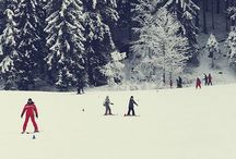 Winter Wonderland / by Amanda Edington