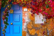 Doors / by Alma Mayorga