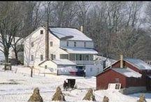 Everything Amish...love em! / by Ann Wilcher