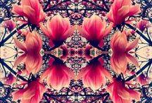 Art & Design / by Dolly Vu