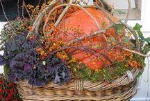 Autumn / I loveeeeeeee Fall!!!! / by Tonya Baker