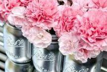 Flowers / by Tiba Farahani