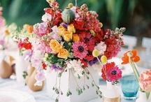 Summer / by H.Bloom Weddings