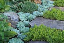Landscapes & Garden Ideas / by Betty Soriano