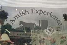 Amish / by Judy Montey