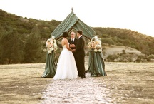 Wedding / by Laura C