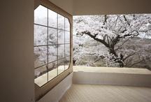 Architecture / by Dixi Carrillo