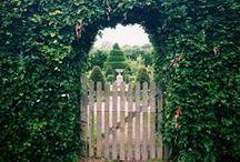 Landscaping  / by Elle Blair