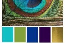 paints and colors / by Jennifer Lee