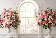 Inspirations: English Garden / by Rose of Sharon Floral Designs, Althea Wiles