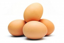 Great Sources of Protein / by Never Give Up Fitness