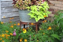 outside decor & gardening / by Rhonda Bridges