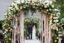 Wedding Ideas / by Alyssa Wills