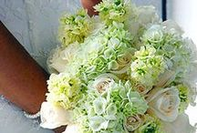 With this Ring...  by Proven Winners / Wedding ideas and inspiration for your special day. / by Proven Winners Plants