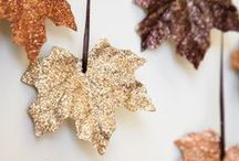 We love autumn / by Crown and Glory