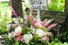 Garden Ideas / Add some pizzazz to your garden space...(I also have separate boards for Garden Tips and for Garden Design.) / by Didi Dreams...