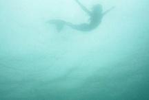 Mermaids / by Cynthia Sass