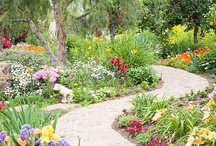 Landscape and Design Ideas / by Didi dreams...
