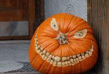 Halloween! / by Cynthia Sass