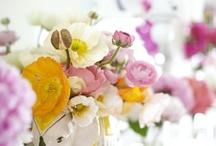 Floral Inspiration / by Allison Egan
