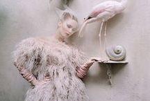 T I M _ W A L K E R / Layered fantasy. / by Lauren Krysti Photography