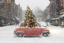 CELEBRATE // christmas / by Becka Robinson