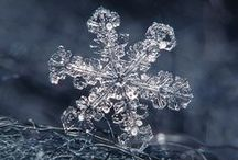 Snow Flakes Are Absolutely Breathtaking!! / by Coll