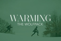 Warming the Wolfpack  / by Rebecca Minkoff