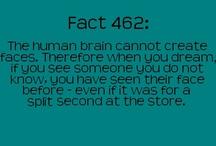 Did you know... / by Savanna Bota