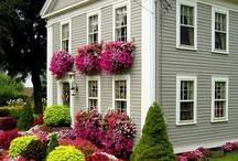 Houses / by Kim