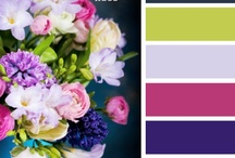 Color Schemes / by Kim
