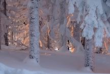 Winter / by Debbie H.