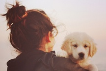Pinnin' Dogs Till I Get One / by Gerryanne Schwanke