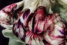 Prints and Patterns Flower / by Jesu Reitze
