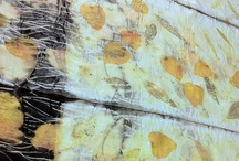 Textiles dyed / painted / by Jesu Reitze