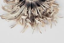paper / by motheaten