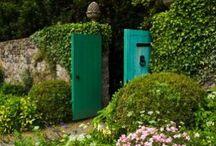 Secret Garden / by Molly E. Nolan