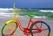 Vélo / by Lyne Bourgon