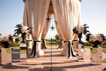 Wedding board / by Renee Jones