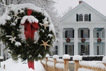 Christmas / tis the season / by suza wag