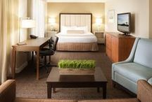 Around the Hotel / by Crowne Plaza Jacksonville Riverfront
