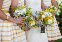 Ashleigh's Wedding / by Holly Ehlenfeldt Stockman